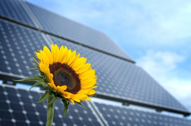 Collegamento a Energia e sostenibilità del XXI secolo